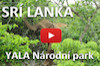 Video Srí Lanka - Safari - Yala Národný park